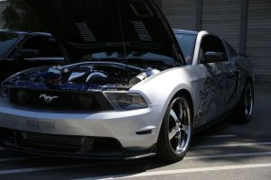 Daniel V's Paxton NOVI 2200 Supercharged Body Ink Mustang GT