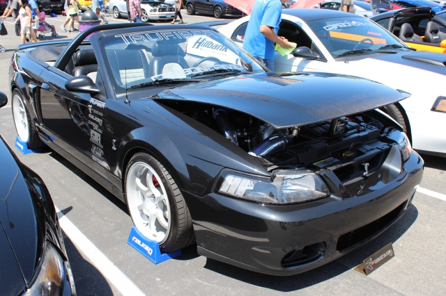 Junior G's Paxton NOVI 1200SL Supercharged Mustang
