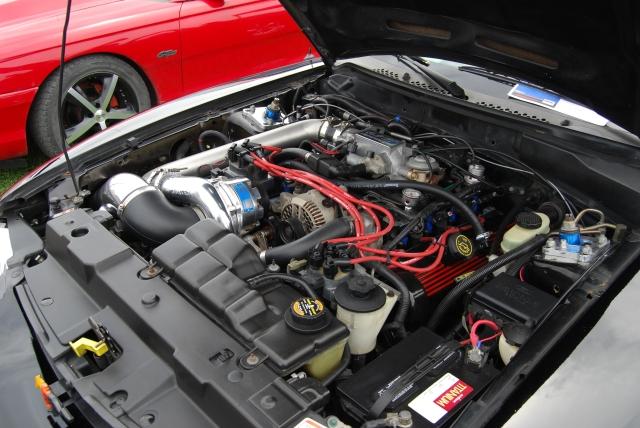 Black Vortech V-1 Supercharged SN95 GT Vert