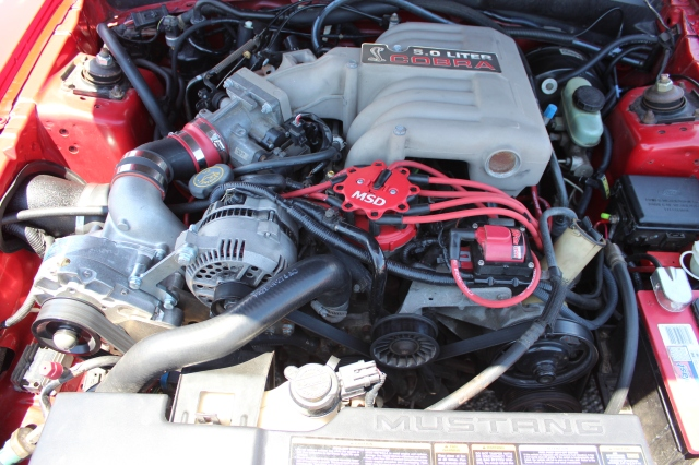 Vortech Supercharged 5.0 Cobra